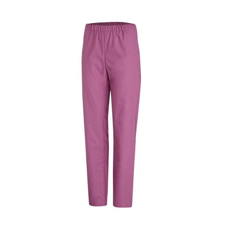 Heute im Angebot: Damen - Schlupfhose 780 von LEIBER / Farbe: brombeere / 50 % Baumwolle 50 % Polyester in der Region Rheine